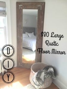 DIY Large Leaning Floor Mirror - Pinteresting Plans